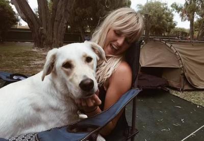 Viral Anjing Beri Ciuman Mesra ke Hiu Paus, Gemes Banget!