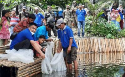 10.000 Bibit Ikan Nila Dilepas ke Wisata Mangrove Apar Pariaman