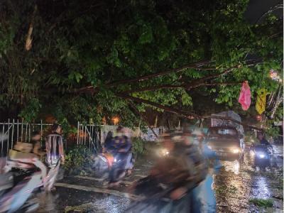 Pohon Tumbang, Akses Jalan di Bekasi Utara Terputus